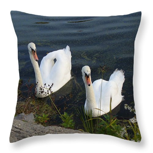 Nature Throw Pillow featuring the photograph Synchronicity by Lingfai Leung