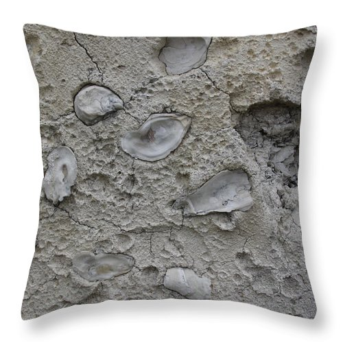 Tabby Throw Pillow featuring the photograph Tabby Construction Detail by Jean Macaluso