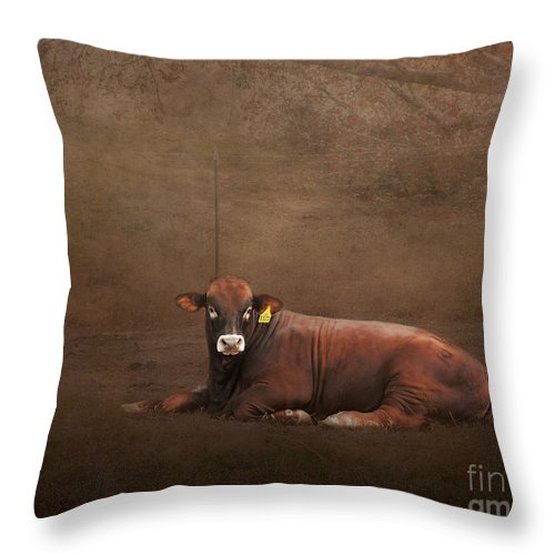 Agriculture Throw Pillow featuring the photograph Tag Number 1121 by Jai Johnson