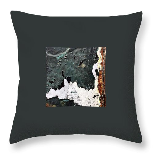 Beautiful Throw Pillow featuring the photograph Post by J Love