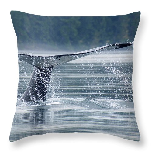 One Animal Throw Pillow featuring the photograph Tail Of Humpback Whale by Grant Faint