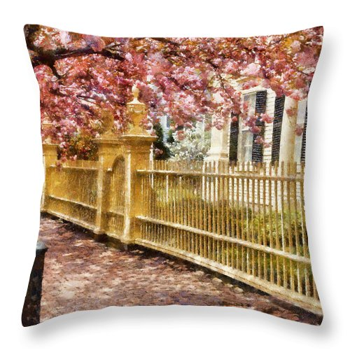 Salem Throw Pillow featuring the photograph Take A Walk Along Federal Street by Jeff Folger
