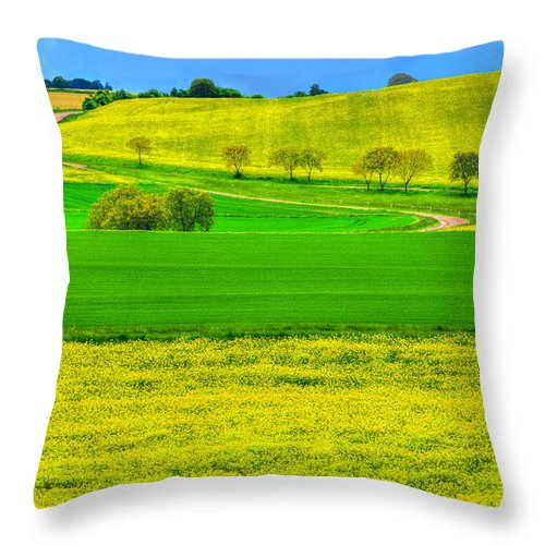 France Throw Pillow featuring the photograph Take Me Home Country Road by Midori Chan