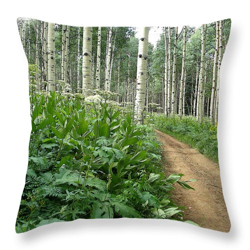 Jeep Road Throw Pillow featuring the photograph Take The High Road by Laurie Purcell