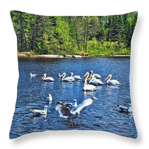 Ontario Throw Pillow featuring the photograph Taking Flight In Ontario by Tommy Anderson