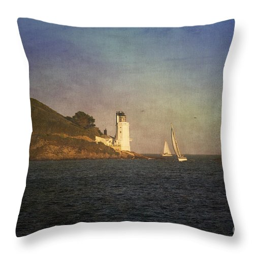 Landscape Throw Pillow featuring the photograph Taking The Short Cut by Brian Roscorla