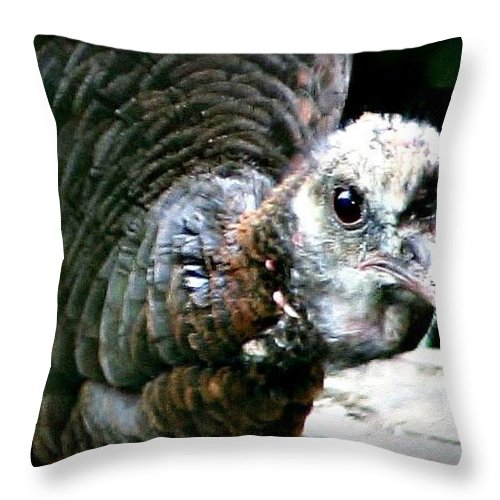 Macro Throw Pillow featuring the photograph Talk Turkey by Barbara S Nickerson