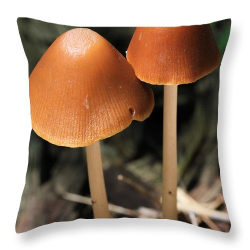 Mushroom Throw Pillow featuring the photograph Tall Dark And Handsome by Doris Potter