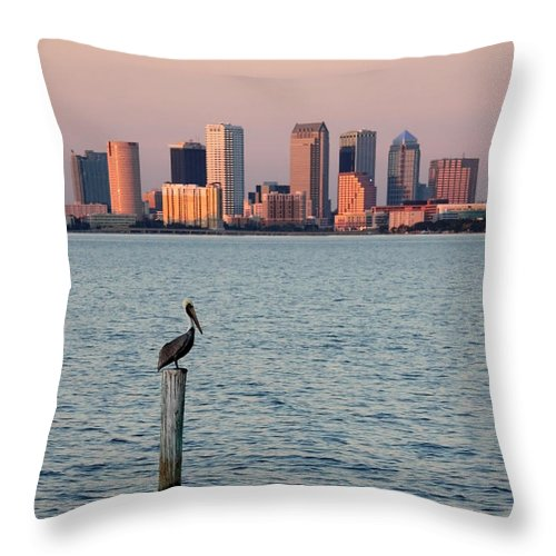 Tampa Throw Pillow featuring the photograph Tampa Skyline And Pelican by Carol Groenen