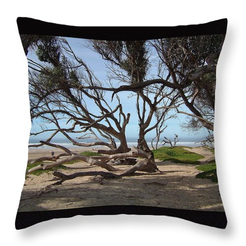 Ocean Throw Pillow featuring the photograph Tangle Of California Trees by Susan Wyman