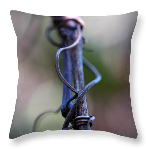 Nature Throw Pillow featuring the photograph Tangled In Blue by Troy Wilfong