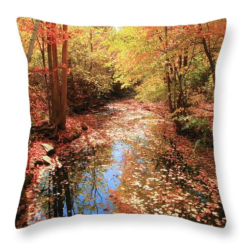 Tanners Brook Throw Pillow featuring the photograph Tanners Brook by Robert McCulloch