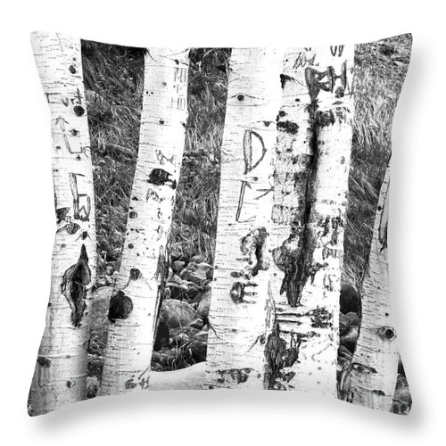 Birch Tree Throw Pillow featuring the photograph Tattoo Trees by Rebecca Margraf