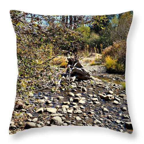 Creek Throw Pillow featuring the photograph Taylor Creek Lake Tahoe by Marcy Wagman