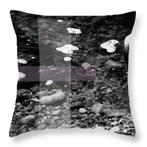 Jamie Lynn Gabrich Throw Pillow featuring the photograph Teamwork by Jamie Lynn