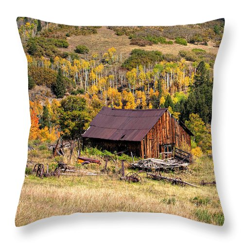 Colorado Throw Pillow featuring the photograph Technicolor by Pam Colander