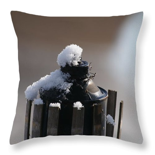 Teki Throw Pillow featuring the photograph Teki Torch In Snow by Crystal Harman