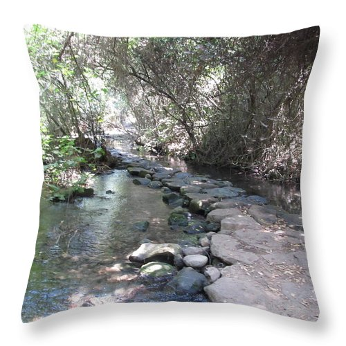 Tel Dan Stepping Stones Throw Pillow featuring the photograph Tel Dan Stepping Stones by Esther Newman-Cohen