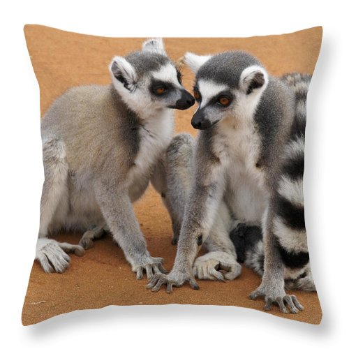 Africa Throw Pillow featuring the photograph Telling Secrets by Michele Burgess