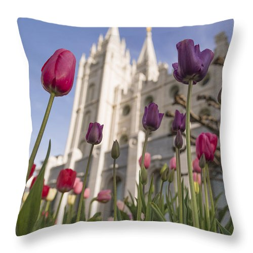 Temple Tulips Throw Pillow featuring the photograph Temple Tulips by Chad Dutson