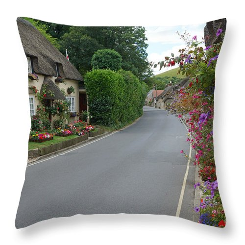 Thatch Throw Pillow featuring the photograph Thatch And Flowers by David Birchall