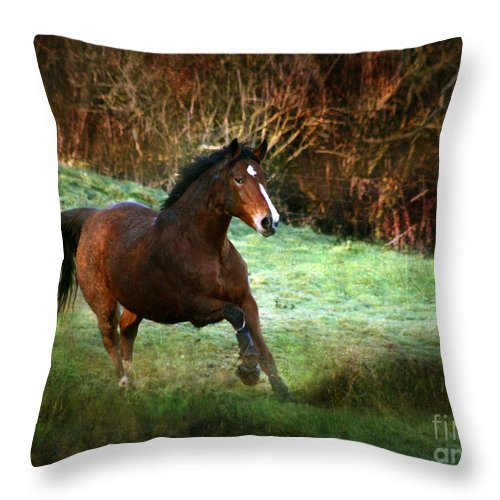Autumn Throw Pillow featuring the photograph The Autumn by Angel Ciesniarska