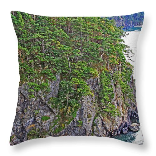 Nature Throw Pillow featuring the photograph The Backbone Of Deception by Brad Walters