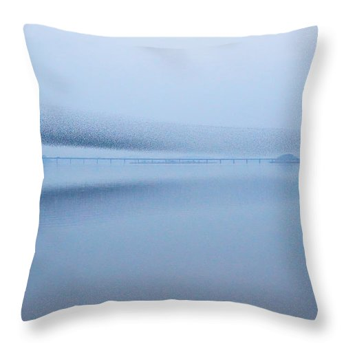 Scenics Throw Pillow featuring the photograph The Baikal Teals 2 by Penboy