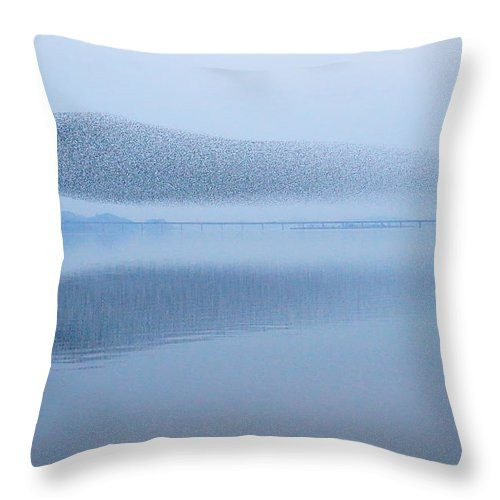 Scenics Throw Pillow featuring the photograph The Baikal Teals by Penboy