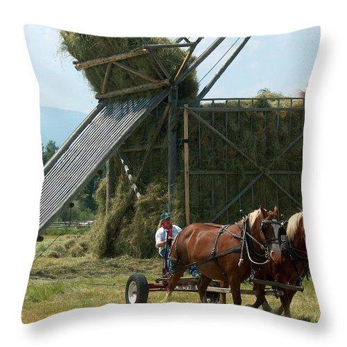 Loose Throw Pillow featuring the photograph The Beaverslide     by Mark Eisenbeil