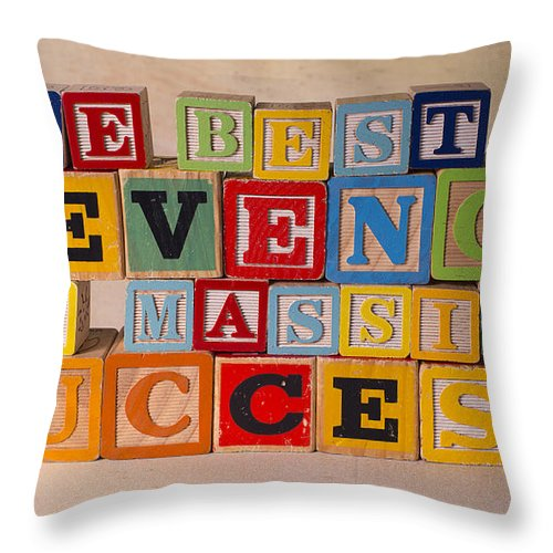 The Best Revenge Is Massive Success Throw Pillow featuring the photograph The Best Revenge Is Massive Success by Art Whitton
