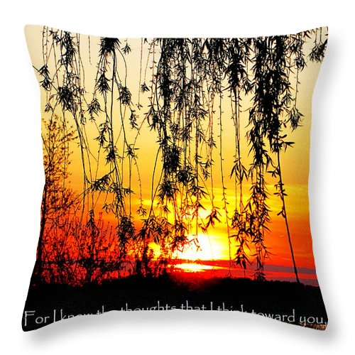 Jesus Christ Throw Pillow featuring the photograph The Bible Jeremiah Twentynine by Ron Tackett