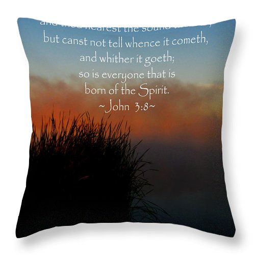 Jesus Christ Throw Pillow featuring the photograph The Bible John Three Eight by Ron Tackett
