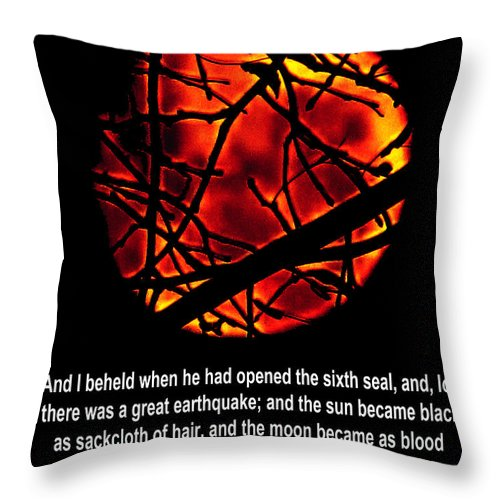 Jesus Christ Throw Pillow featuring the photograph The Bible Revelation 6 by Ron Tackett