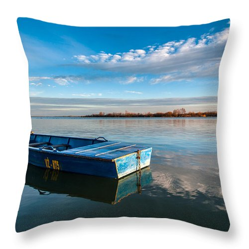 Big Blue Throw Pillows : The Big Blue Throw Pillow for Sale by Davorin Mance