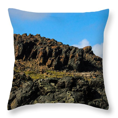 Climb Throw Pillow featuring the photograph The Big Climb by Judy Wolinsky