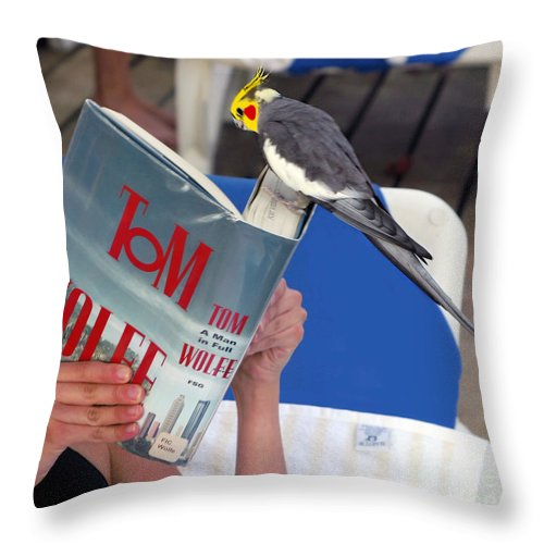 Bird Throw Pillow featuring the photograph The Bird Brain by Madeline Ellis