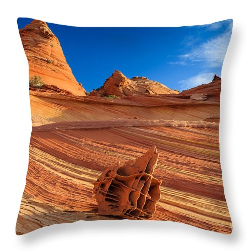 Bone Yard Throw Pillow featuring the photograph The Bone Yard In The North Coyote Buttes by Henk Meijer Photography