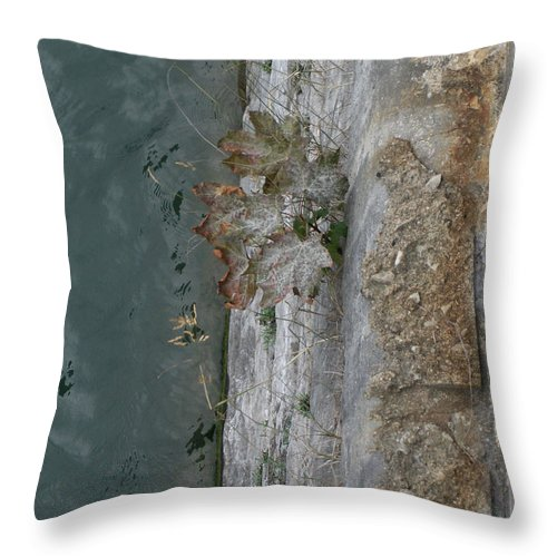 Landscape Throw Pillow featuring the photograph The Canal Water by Brenda Brown