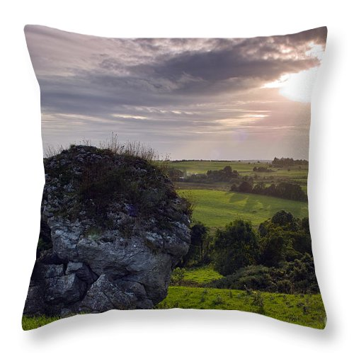 Cat Stone Throw Pillow featuring the photograph The Cat Stone by William Cleary