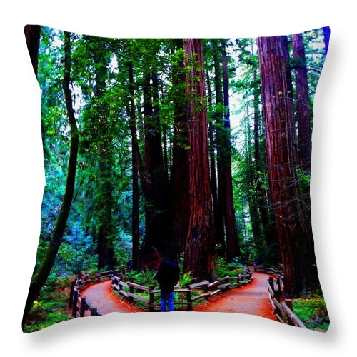 Muir Woods National Monument Throw Pillow featuring the photograph The Cathedral by Cathleen Cario-Reece