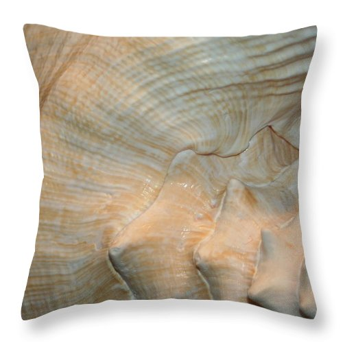 Conch Throw Pillow featuring the photograph The Conch by Barbara S Nickerson