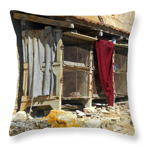 Still Life Throw Pillow featuring the photograph The Coop by Lauren Leigh Hunter Fine Art Photography
