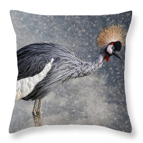 Animal Throw Pillow featuring the photograph The Crane by Joachim G Pinkawa