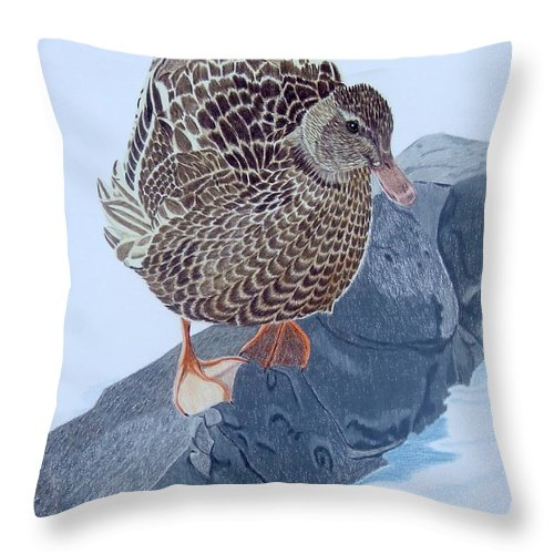 Mallard Throw Pillow featuring the painting The Debutaunte by Anita Putman
