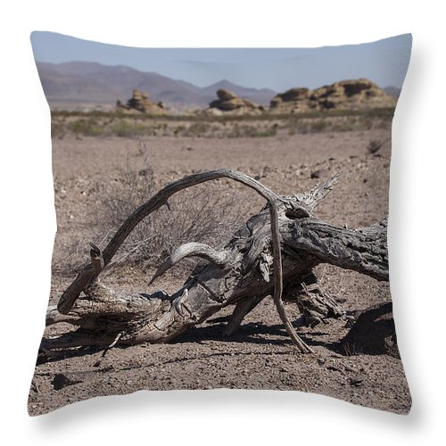 Landscapes Throw Pillow featuring the photograph The Desert Floor by Amber Kresge