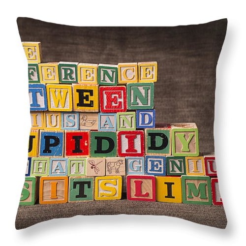 The Difference Between Genius And Stupidity Is That Genius Has Its Limits Throw Pillow featuring the photograph The Difference Between Genius and Stupidity Is That Genius Has Its Limits by Art Whitton