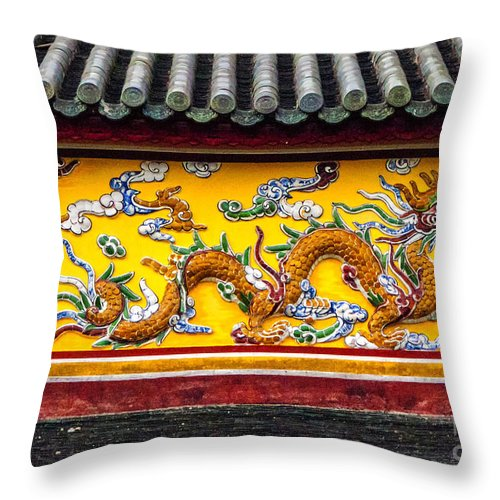 Asia Throw Pillow featuring the photograph The Dragon by Roberta Bragan