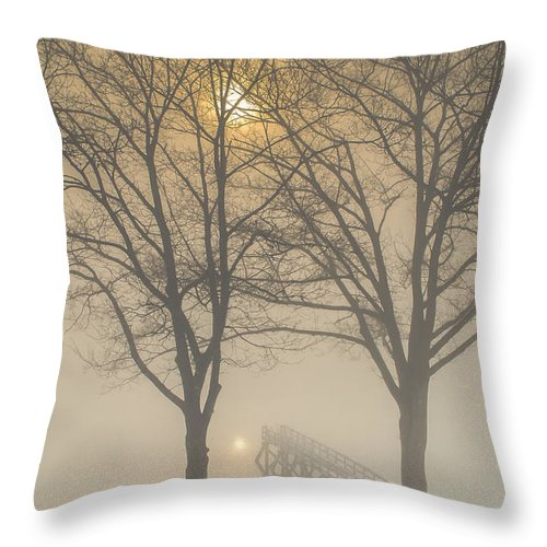 Embrace Throw Pillow featuring the photograph The Embrace by Scott Thorp
