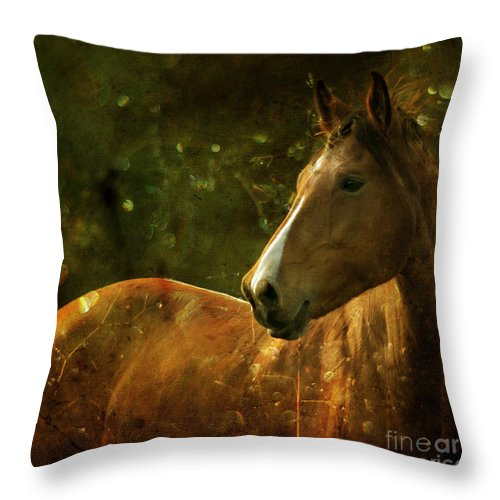 Horse Throw Pillow featuring the photograph The Fairytale Horse by Angel Ciesniarska